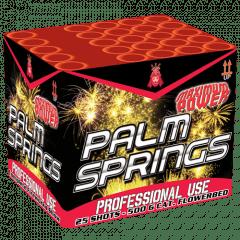 PALM SPRINGS (nc)