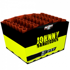 JOHNNY DANGEROUS (nc)